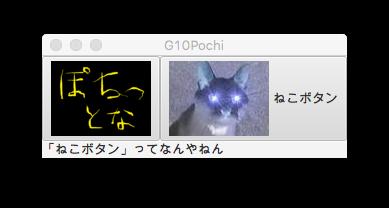 G10Pochi.png