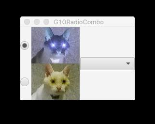 G10RadioCombo.png